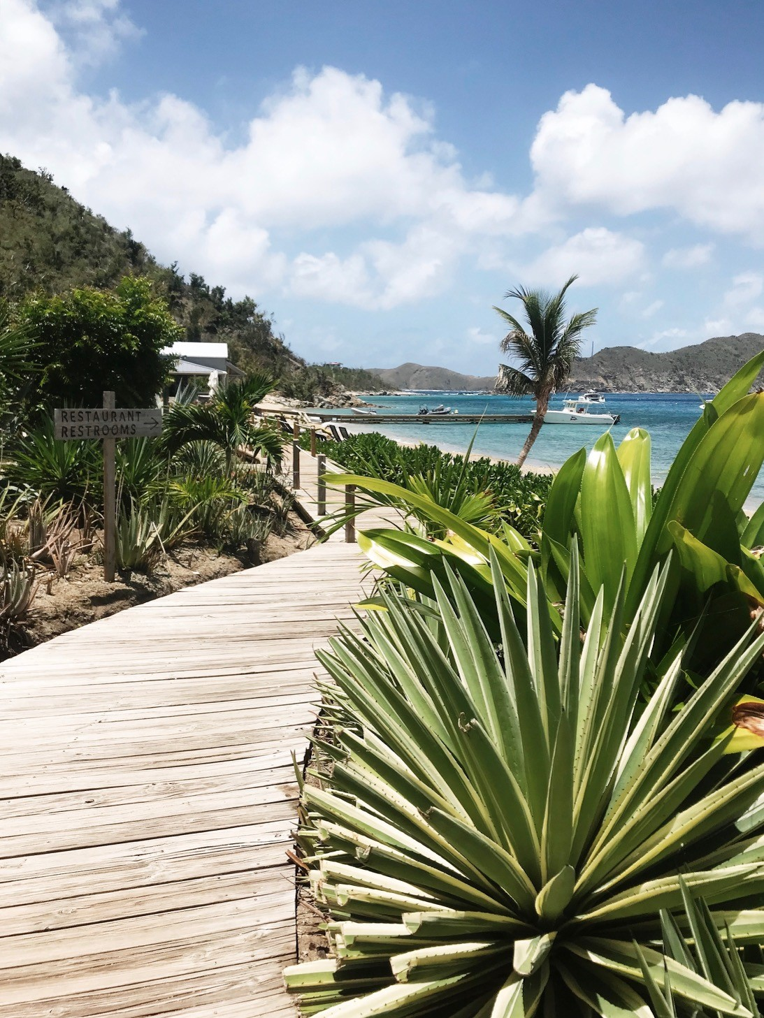The definitive BVI restaurant guide - all the tips on where to eat in the BVI post-Irma