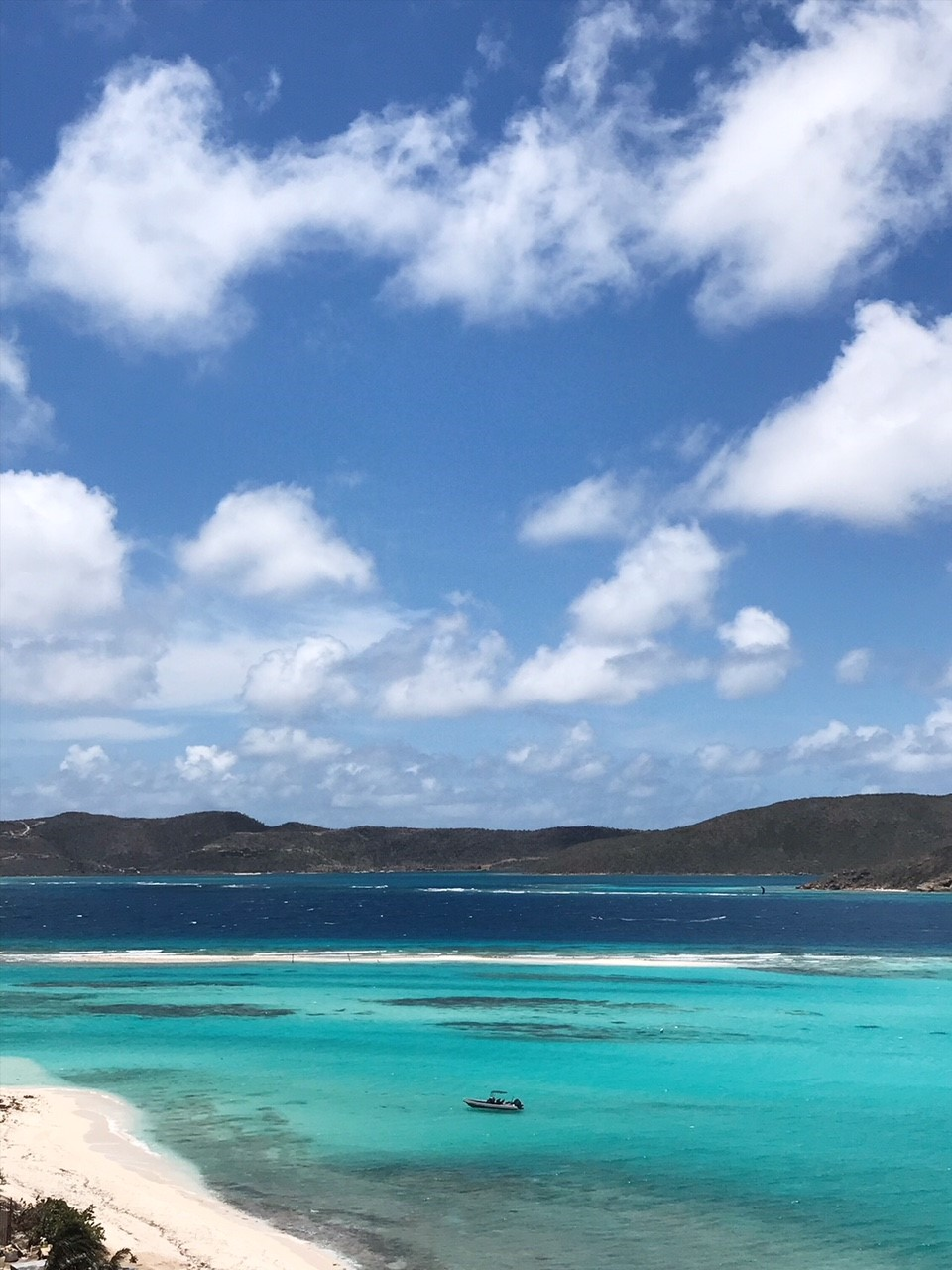 Necker Island Wildlife Tour with Gumption's Learning Adventures