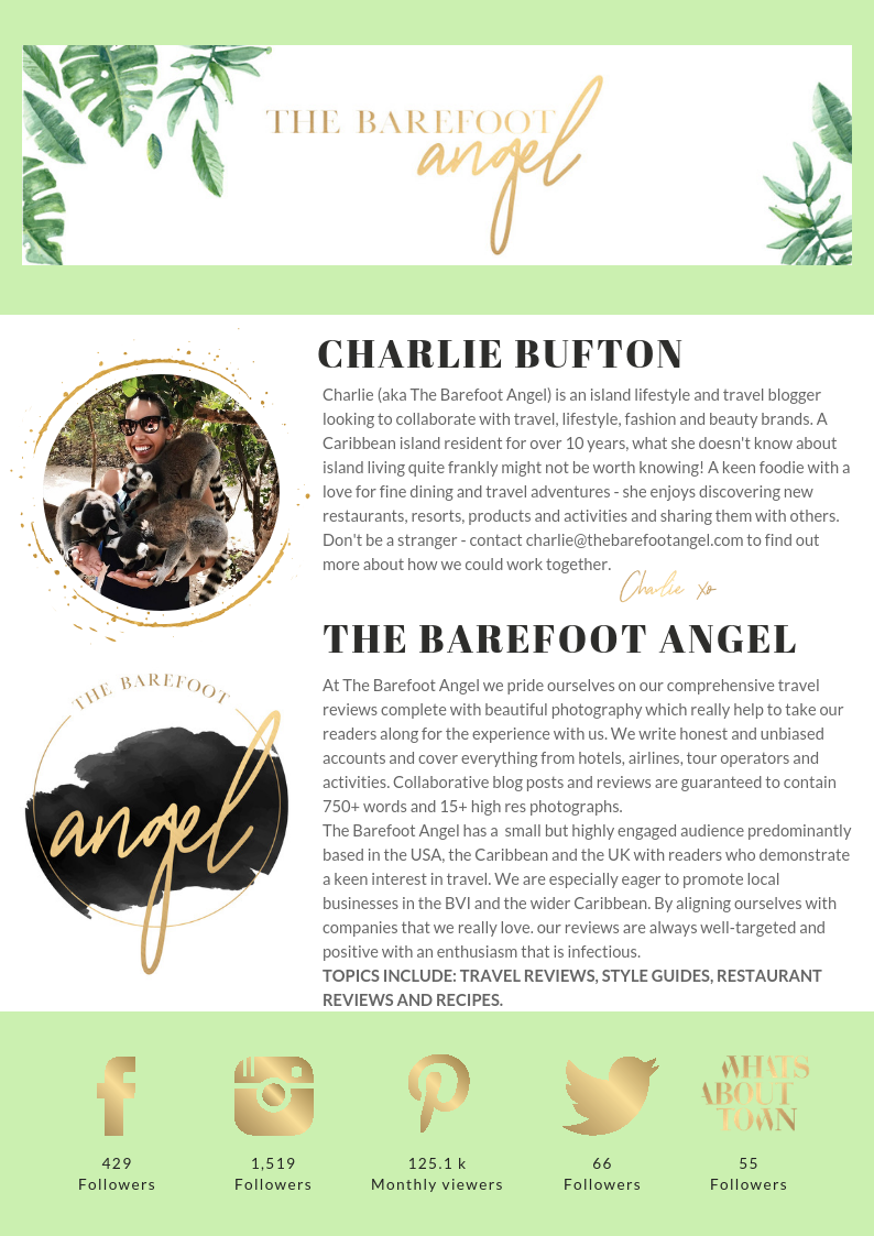 The Barefoot Angel - Work With Me - Media Kit