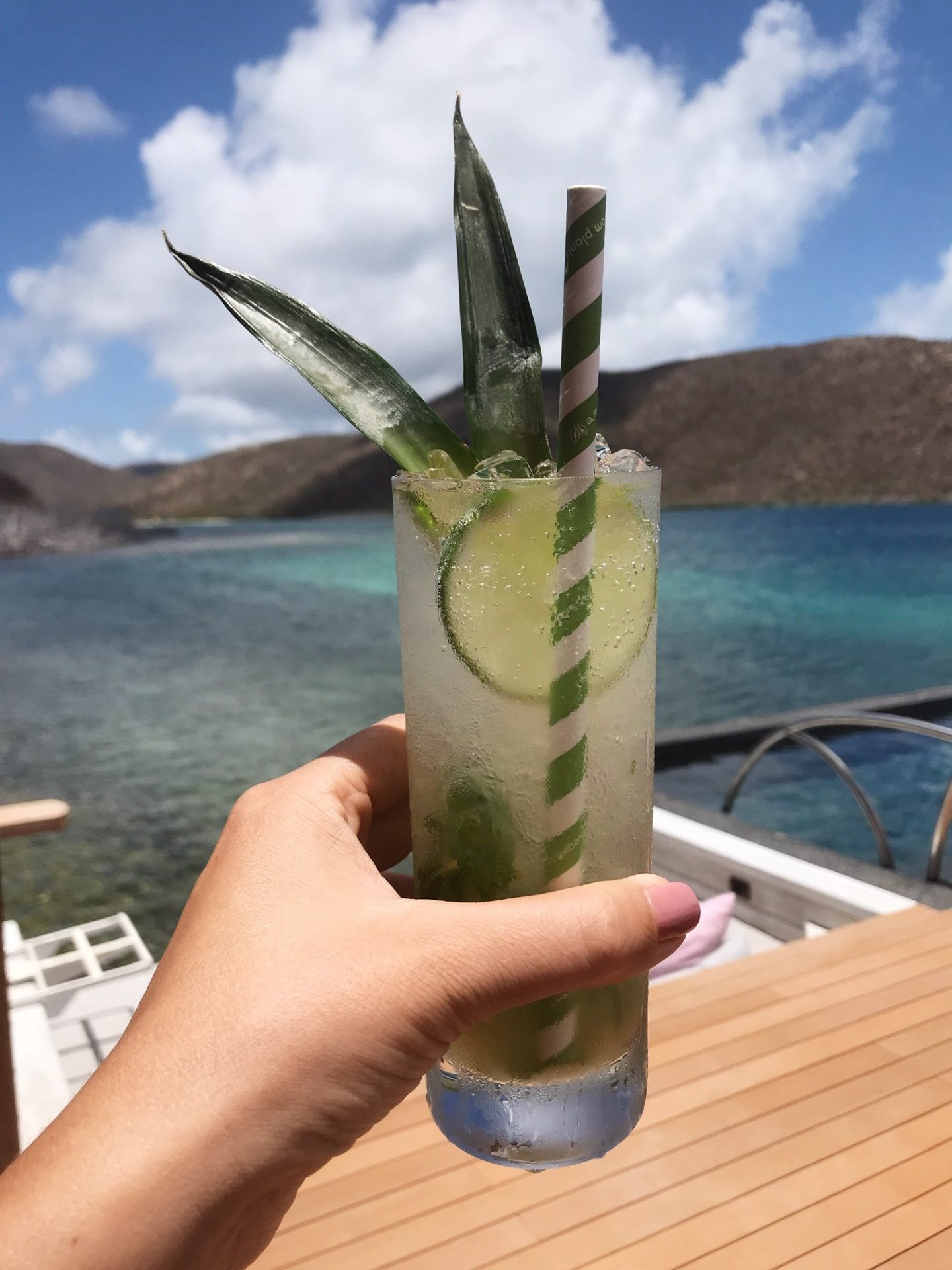 Cheers! Enjoying the views at Nova Restaurant, Oil Nut Bay in the British Virgin Islands