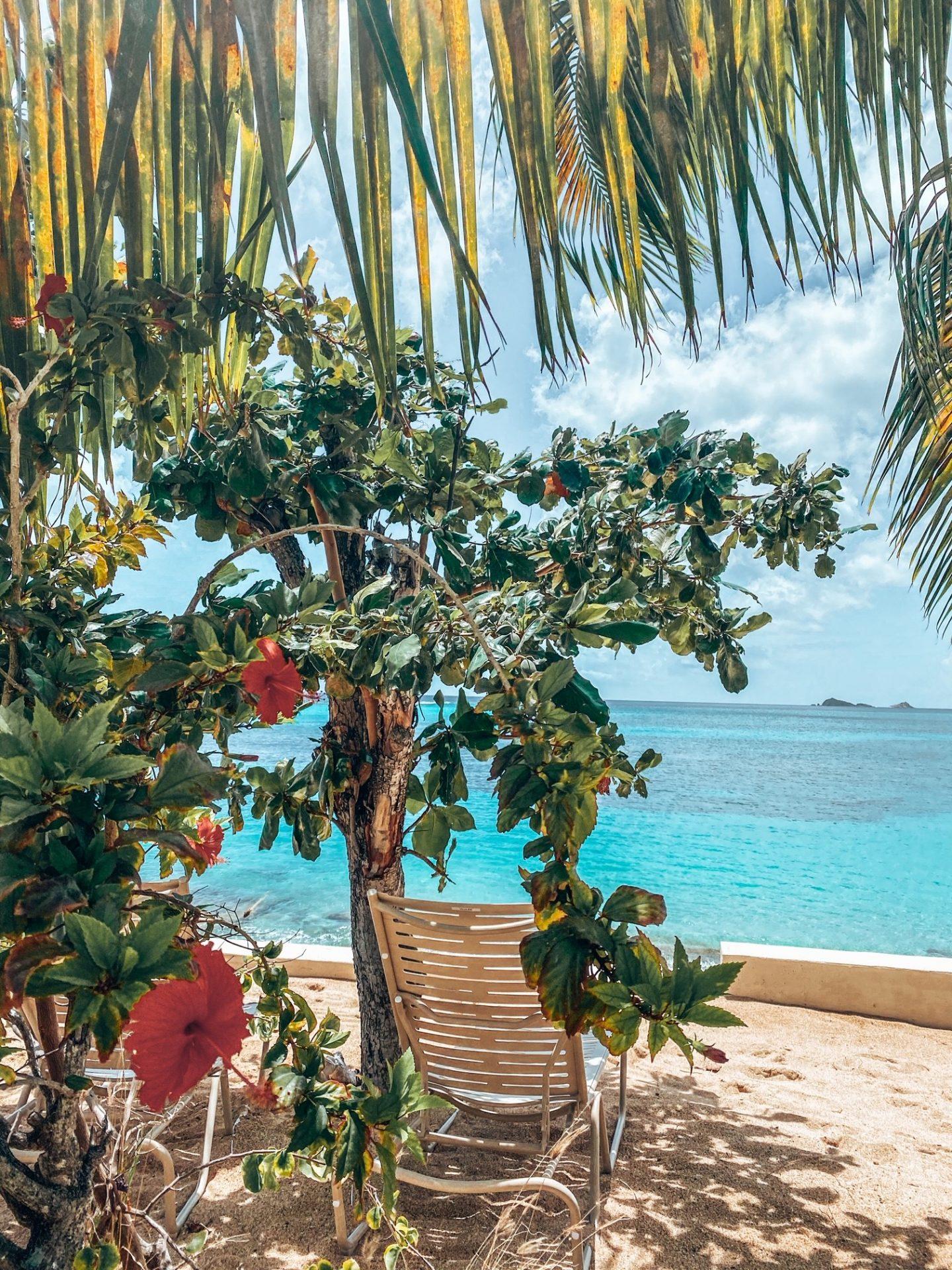 Tropical Paradise - Mango Bay Resort, British Virgin Islands